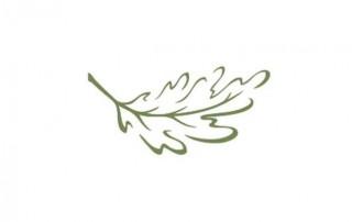 leaf4