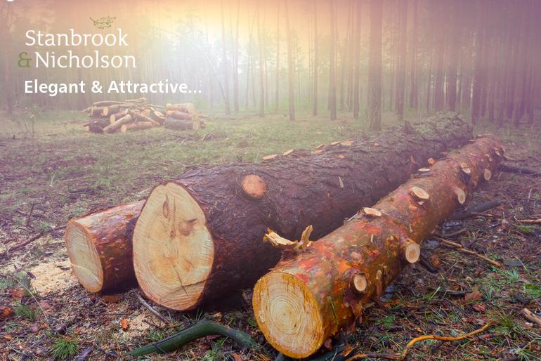 Stanbrook & Nicholson bespoke timber joinery