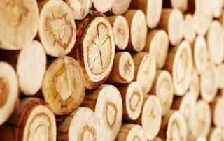 Closeup of wooden logs piled up together